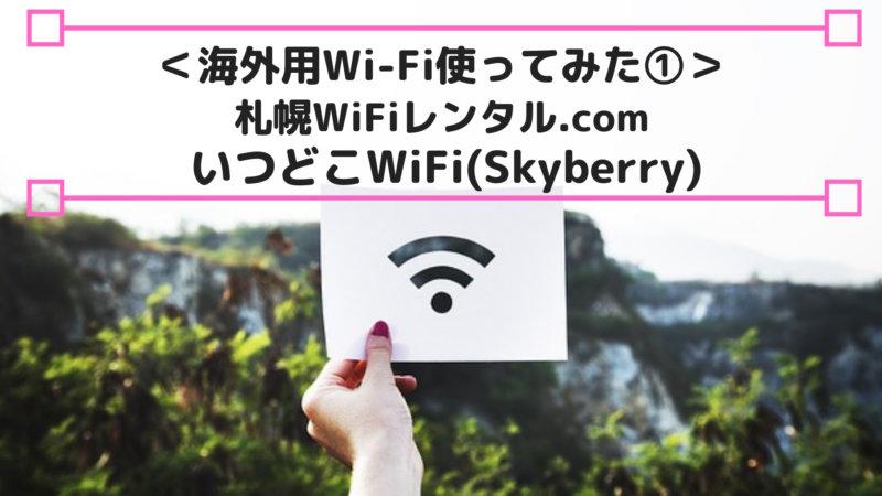 いつどこWi-Fi(Skyberry)